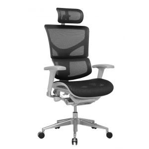 Ergo-Dynamic Posture Chair