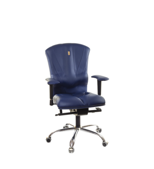 Victory Ergonomic Desk Chair