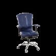 Victory Ergonomic Desk Chair