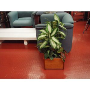 Office Faux Plants and Planter