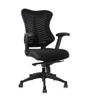 SPINE DESK CHAIR